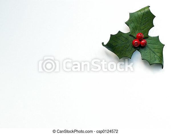 Holly - csp0124572