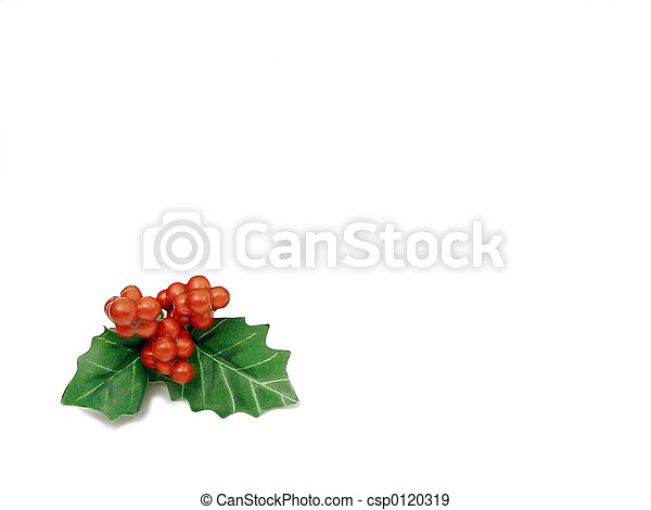 Holly - csp0120319