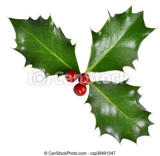Santo de Navidad - csp38491047