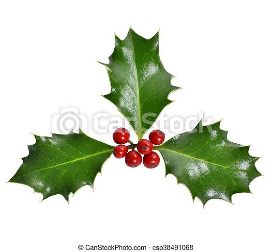 Santo de Navidad - csp38491068