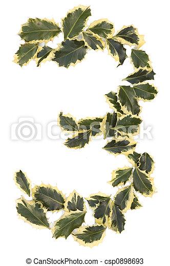 Holly número tres - csp0898693