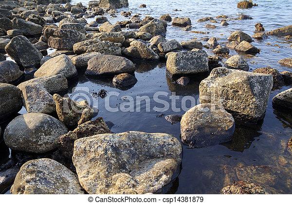 vertido de petróleo en la costa del mar, desastre ecológico - csp14381879
