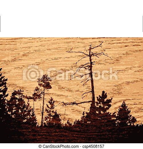 achtergrond, hout - csp4508157