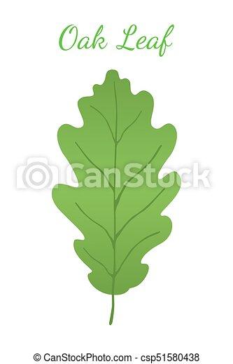 Acorn leaf, oak nut, seed. Cartoon flat style. Vector illustration - csp51580438