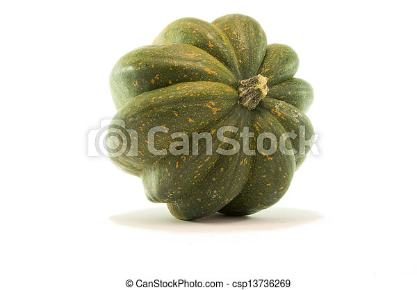 Acorn Squash Isolated on White Background - csp13736269