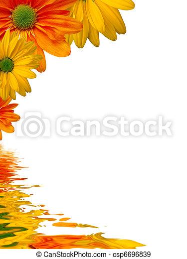 acqua, fiori, riflettere, fondo - csp6696839