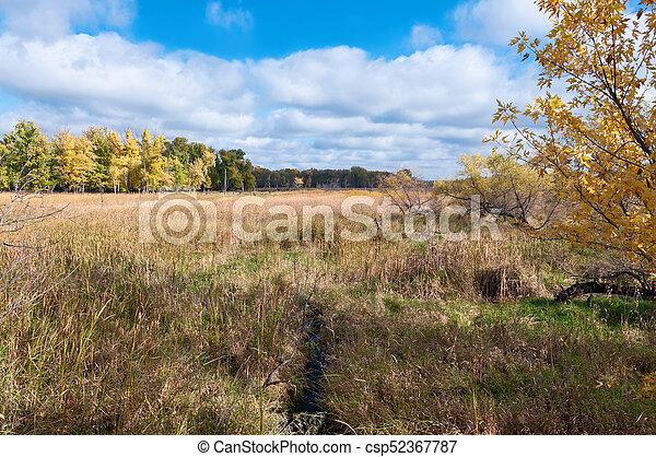 Across the Wetlands at Eagan Refuge - csp52367787