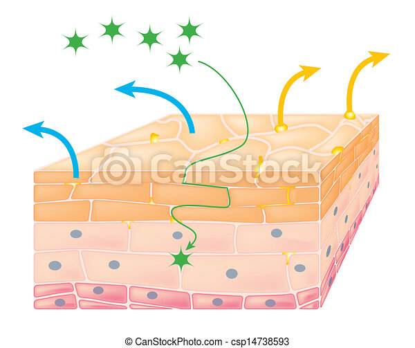 Action of eczema on skin - csp14738593