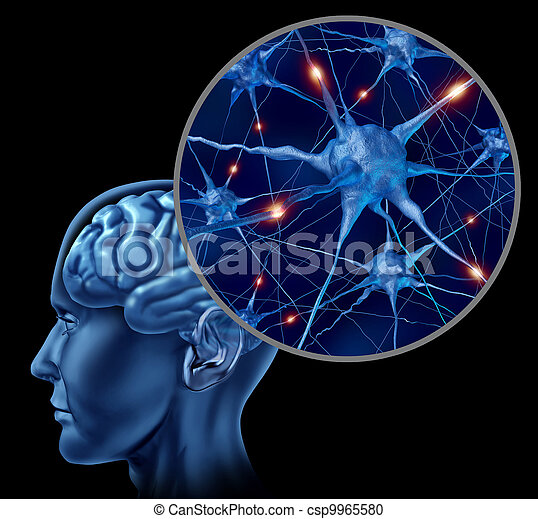 Active Human Neurons - csp9965580