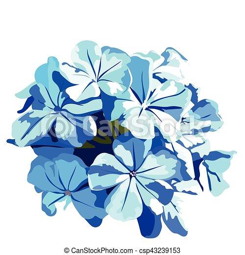 Acuarela Flores Azules Ramo Azul Ramo Vendimia Aniversario