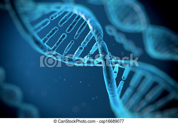 adn, molécules - csp16689077