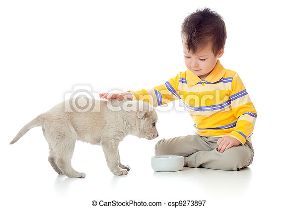adorable boy playing with a puppy - csp9273897