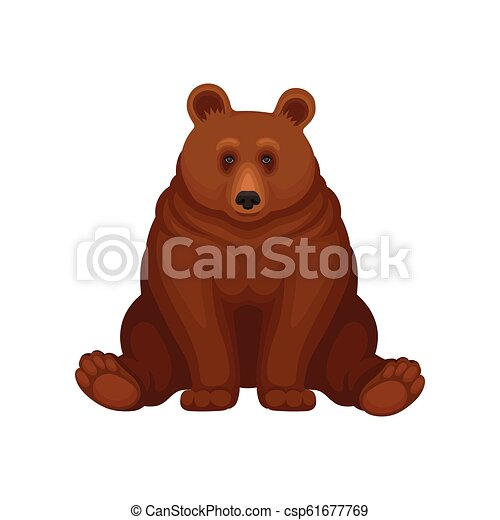 Adorable Brown Bear Sitting Isolated On White Background Large Forest Grizzly Big Mammal Animal Flat Vector Icon Adorable