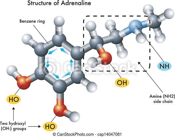 Adrenalin Droge
