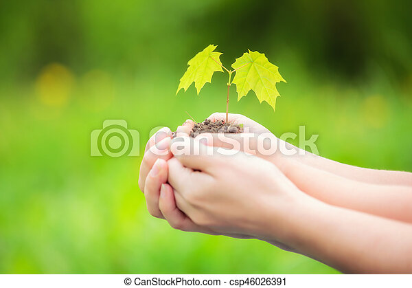 Adult and child holding little green plant in hands - csp46026391