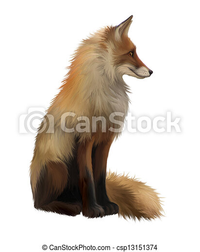Adult fox, Side view. Sitting - csp13151374