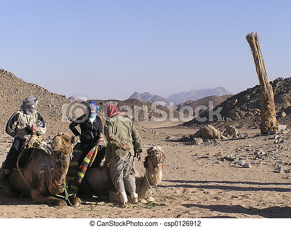 Adults tourists on camels 2 - csp0126912