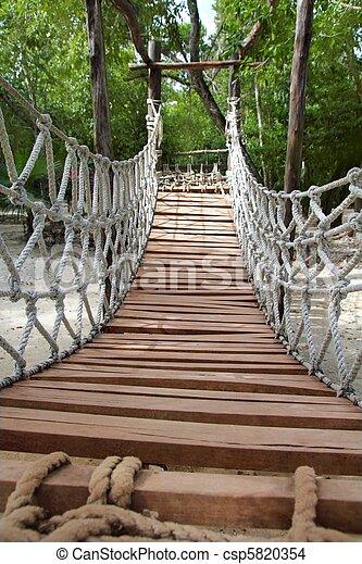 Adventure wooden rope jungle suspension bridge - csp5820354
