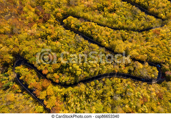 Aerial above view of autumn forest winding road - csp86653340