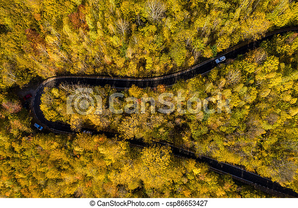 Aerial above view of autumn forest winding road - csp86653427
