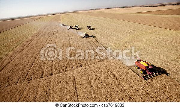 Aerial Harvest Landscape - csp7619833