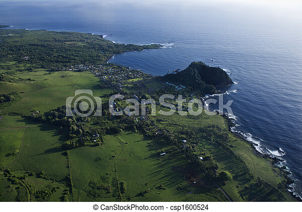 Aerial Maui landscape. - csp1600524