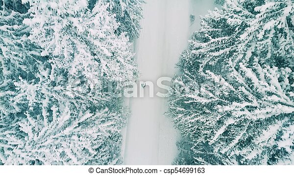 Aerial Shot Of A Person Hiking In Forest The Snow