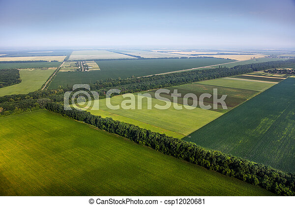 aerial view above the green fields - csp12020681