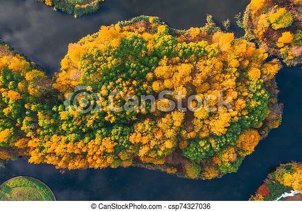 Aerial view from a height of an autumn forest on an island among a lake. - csp74327036