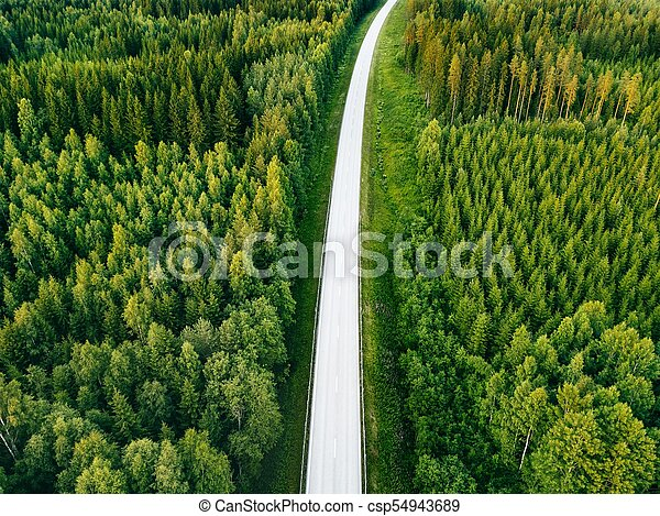 Aerial View From Above Of Country Road Through The Green Summer Forest In Finland