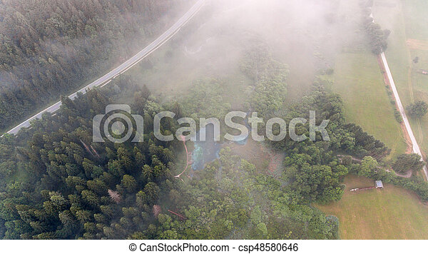 Aerial view of a forest. - csp48580646