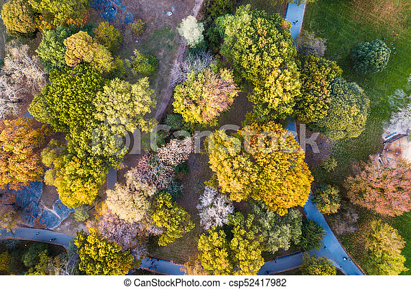 Aerial view of a park in autumn - csp52417982