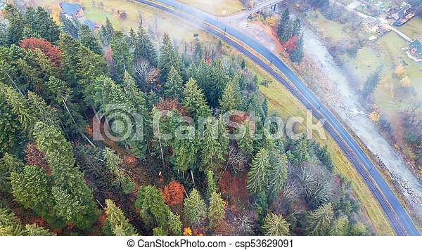 Aerial view of autumn pine forest with yellow and green trees in the mountains - csp53629091