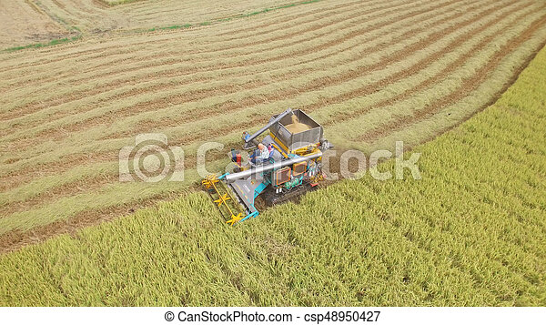 Aerial view of combine on harvest field - csp48950427
