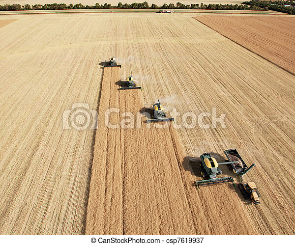 Aerial View of Harvesters in Formation - csp7619937