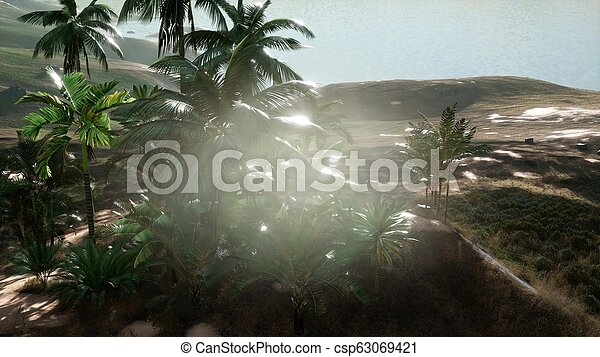Aerial View of palms on sand dunes near the sea - csp63069421