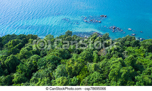 Aerial view of rocky shore with turquoise sea water and green trees - csp78695066