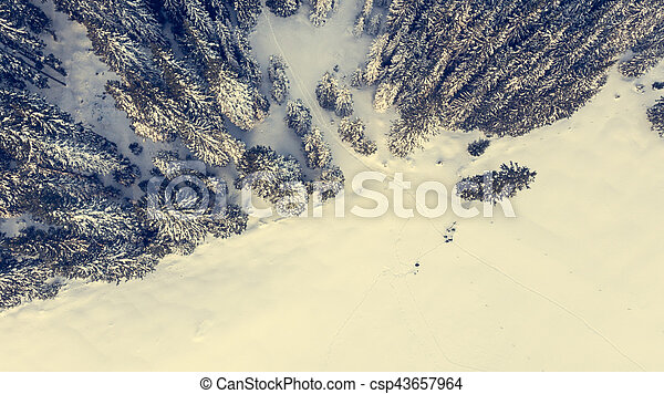 Aerial view of snow covered meadow with forest. - csp43657964