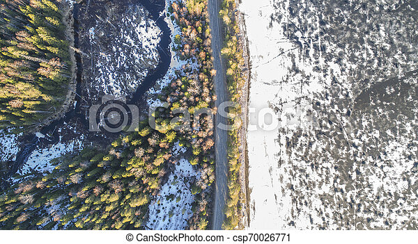 Aerial view of spring rural road in yellow pine forest with melting ice lake - csp70026771