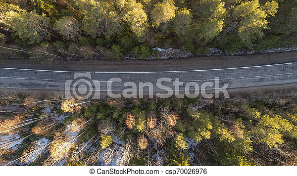 Aerial view of spring rural road in yellow pine forest with snow in rural Russia - csp70026976