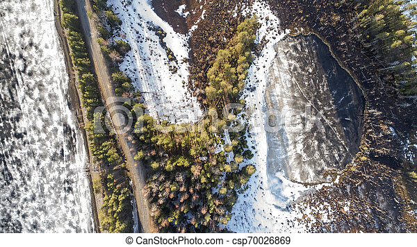 Aerial view of spring rural road in yellow pine forest with melting ice lake - csp70026869