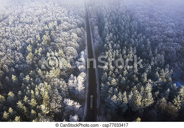 Aerial view of the drone for the road in the winter coniferous forest. - csp77033417