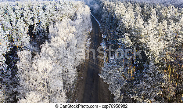 Aerial view of the drone for the road in the winter coniferous forest. - csp76958982