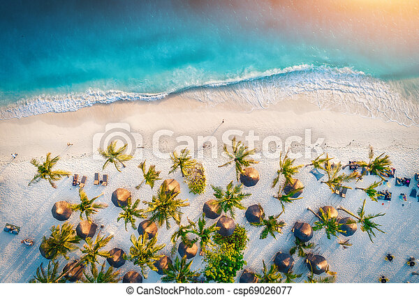 Aerial view of umbrellas, palms on the sandy beach of ocean - csp69026077