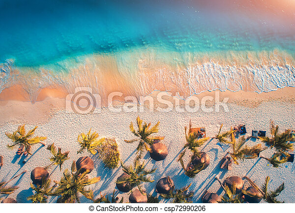 Aerial view of umbrellas, palms on the sandy beach of ocean - csp72990206