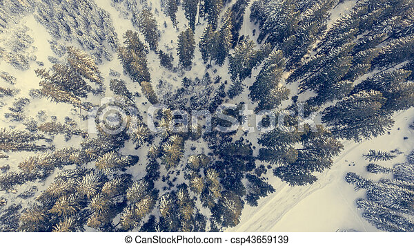Aerial view of winter forest. - csp43659139