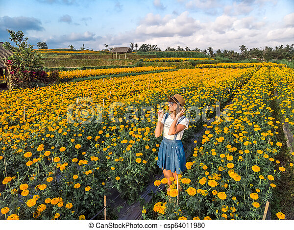 Aerial view of woman on a marigold field. Bali island. - csp64011980