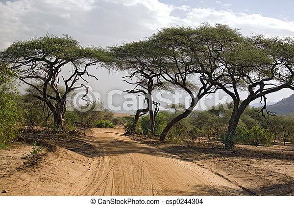 africa landscape 005 - csp0244304