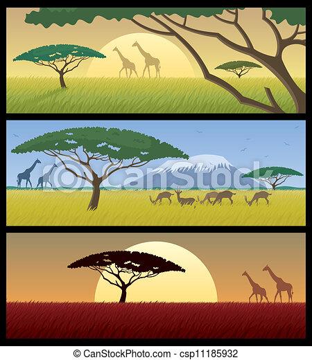 Africa Landscapes - csp11185932