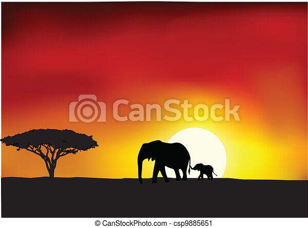 Africa sunset  - csp9885651